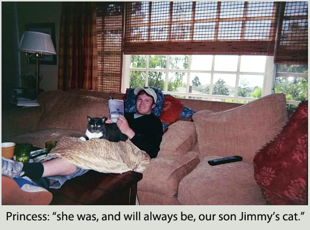 she was, and will always be, our son Jimmy's cat.
