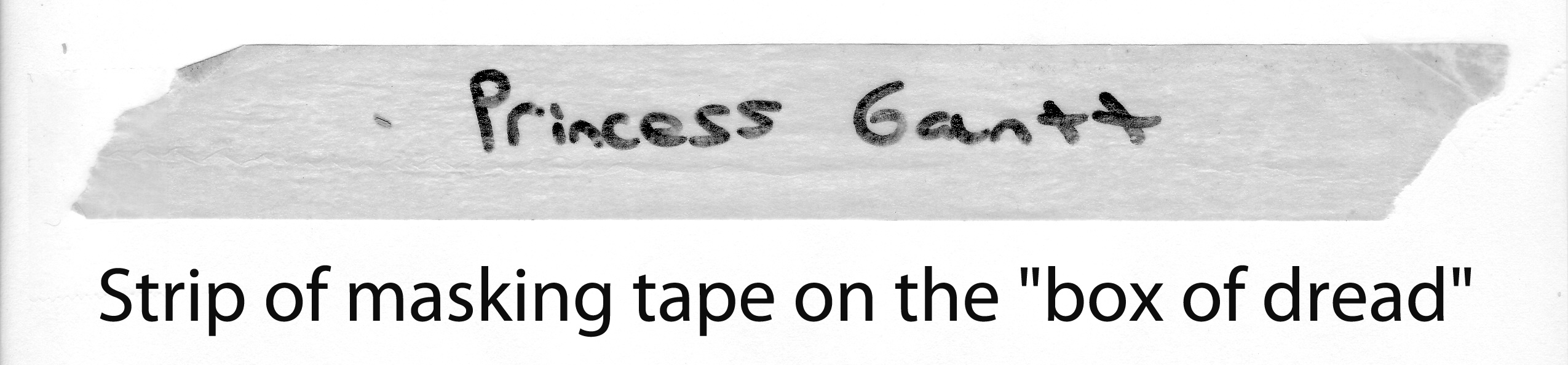 There was a strip of masking tape on the box that must have been put there by the vet or the resort-detention facility upon which had been written with a black magic marker 'Princess Gantt.'