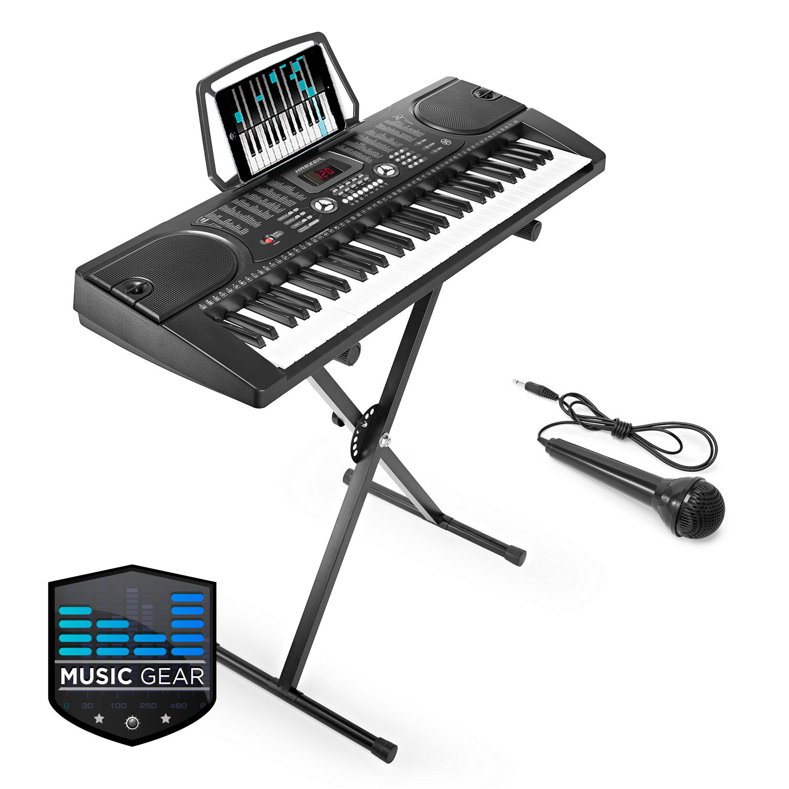 61 key electronic piano electric organ keyboard with stand microphone black ebay. Black Bedroom Furniture Sets. Home Design Ideas