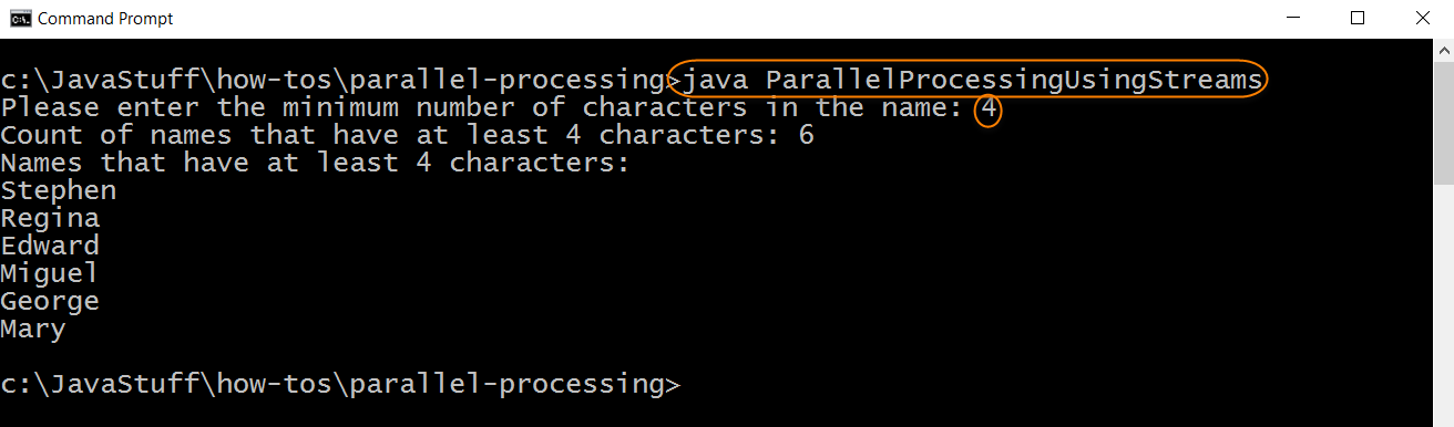 Run Program with Parallel Processing