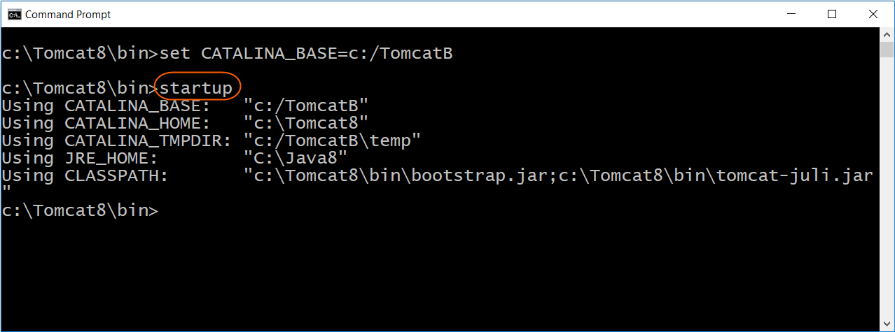 Start Tomcat