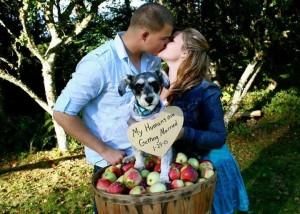 Oregon Wedding Video