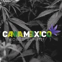 CannaMexico 2019