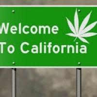 HempStaff California Cannabis Training