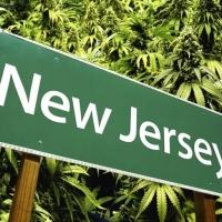 New Jersey & New York Medical Marijuana Training