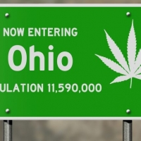 Ohio Medical Marijuana Training
