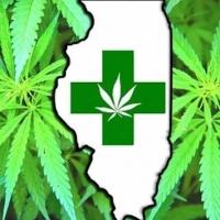 HempStaff Illinois Cannabis Training