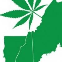 HempStaff New England Cannabis Training