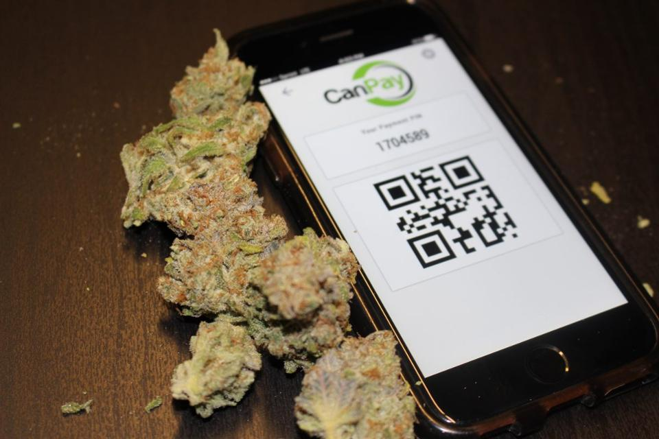 CanPay the Official Cannabis Banking Solution Offered in Hawaii - Cannabis Cash Solutions