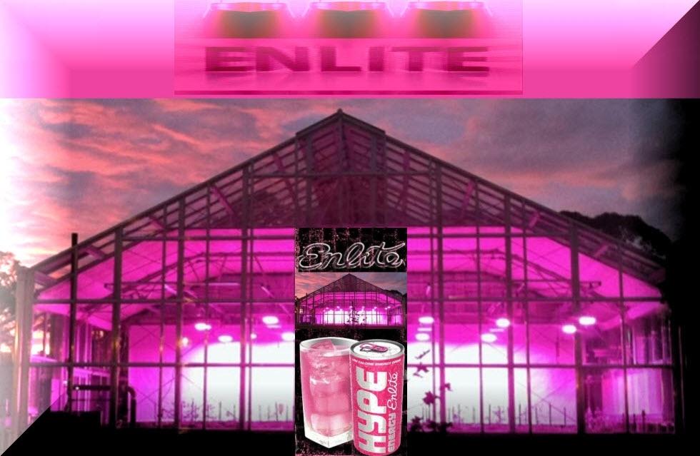 enlite-980x641-w-aBEV