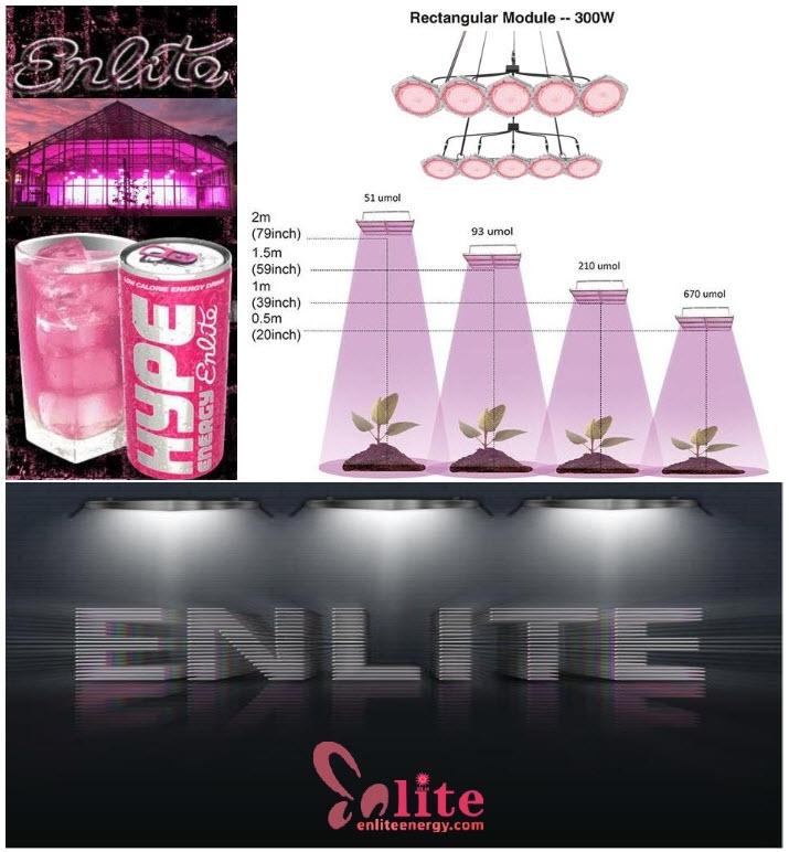 enlite-709x766-wbr