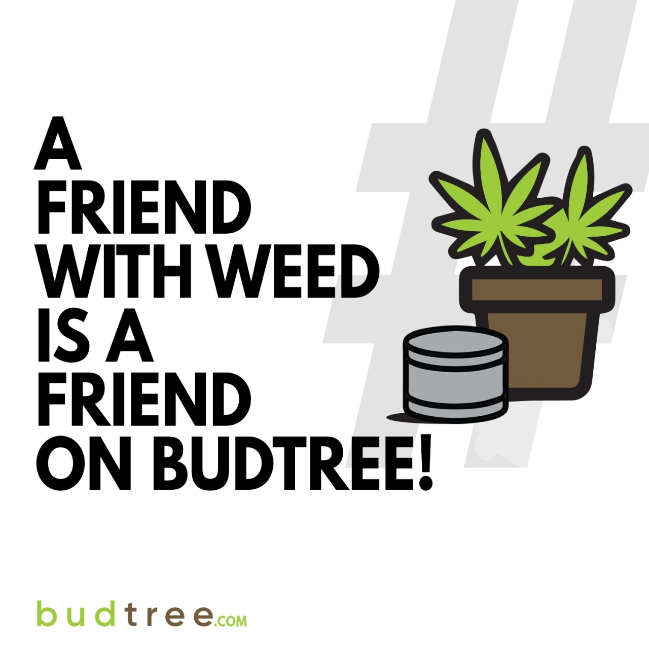 A_budtree_friend