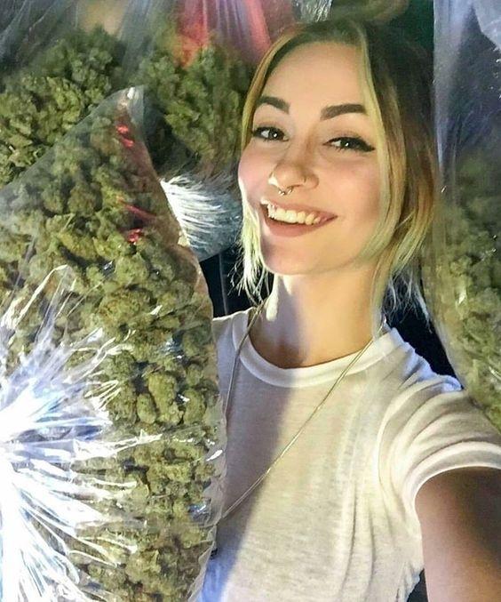 gachi weed