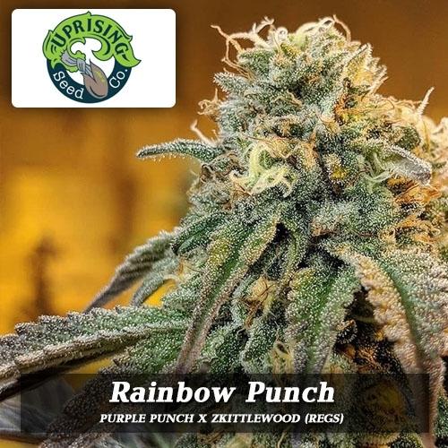 UPRISING-rainbow-punch