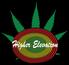 Higher elevation logo