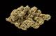 Dr green thumb3820160314 19587 1orm9m1