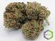 Trusted meds delivery 1820160419 10420 pj7ud6