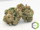 Rite greens delivery sd520160603 13365 wgib88