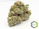 Rite greens delivery sd1220160603 13365 vst11g