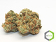 Rite greens delivery sd2320160603 13365 1j306zu