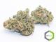 Rite greens delivery sd2620160603 13365 4gzt5l
