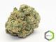 Rite greens delivery sd3220160603 13365 dz550h