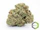 Rite greens delivery sd 11420160603 24817 e4766u