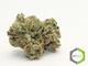 Rite greens delivery 11020160603 26427 1e9qpm3