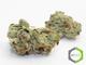 Rite greens delivery 11620160603 26427 go810o
