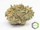 Rite greens delivery 12220160603 26427 ado4xn