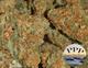 Spliffys 16320160617 16143 c98v4h