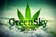Greensky caregivers 7920160629 14198 1tpt839