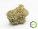 Rite greens delivery 16720160629 19077 qrcjk4