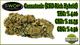 Southwest organic producers1720160720 27112 1b4wmxk