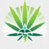 Sun valley mmj certification clinic phoenix20150921 20943 ud2p8
