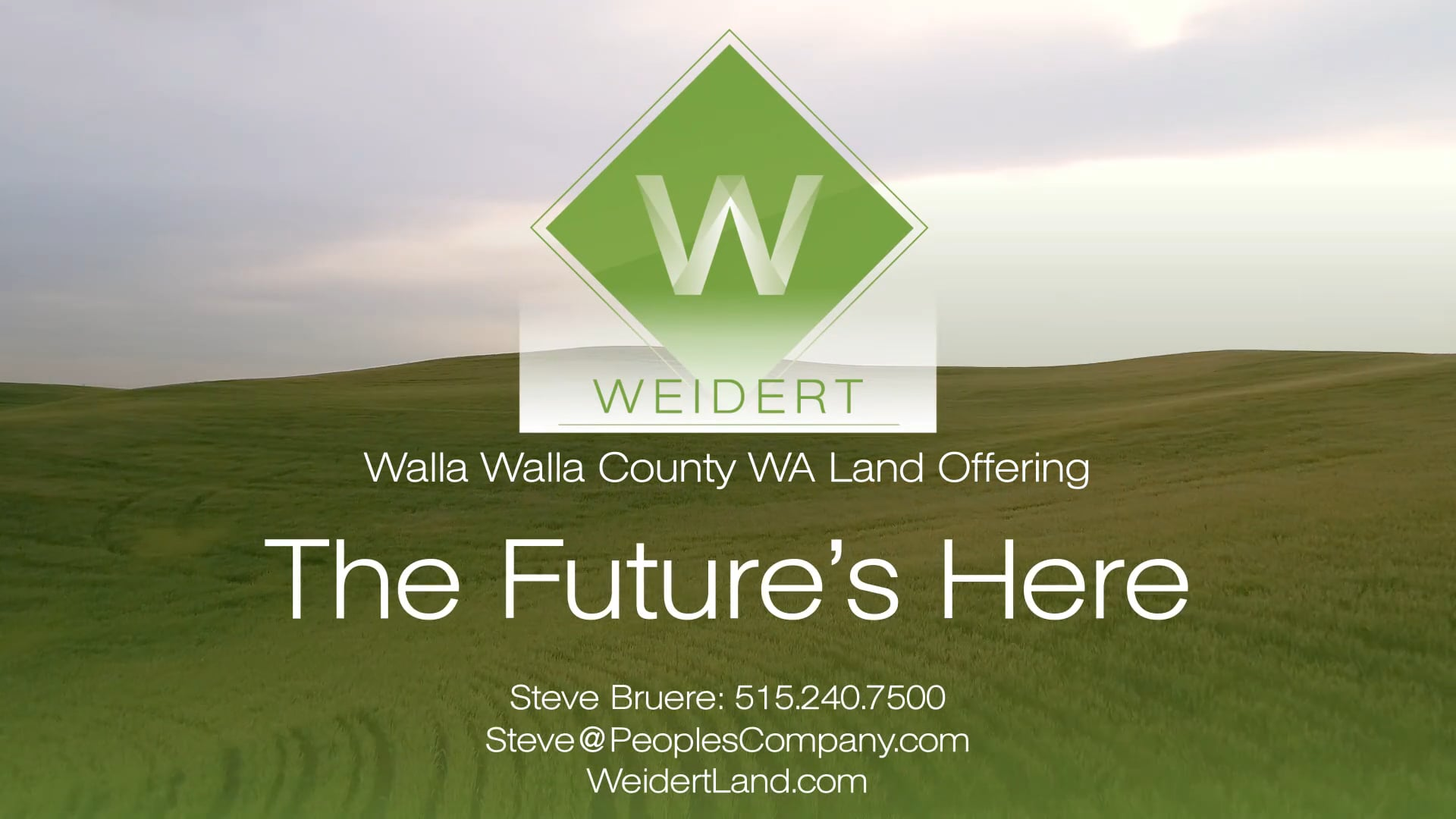 Weidert Future