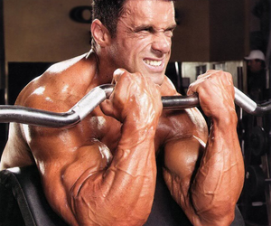 Best Biceps Workout Plan
