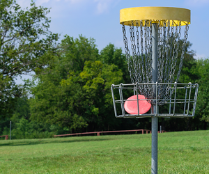 Disc Golf Workout Plan
