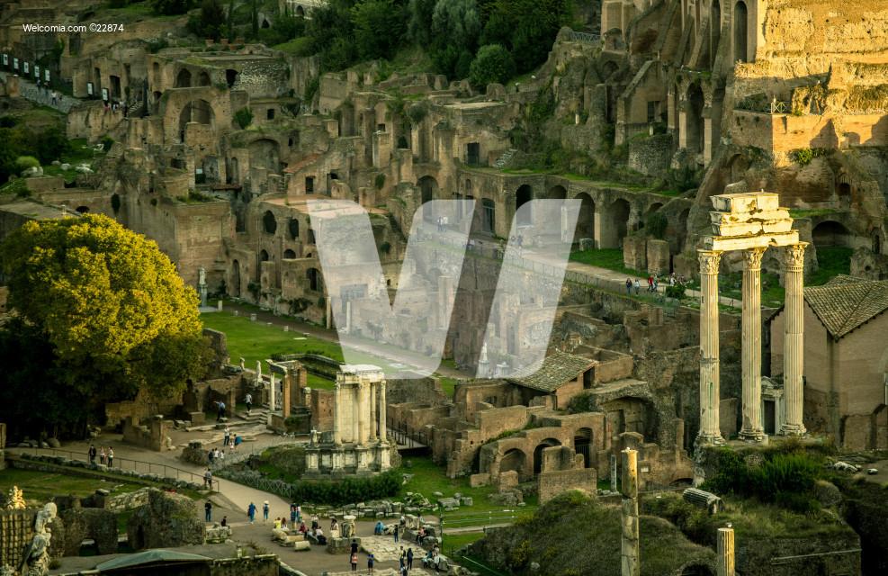 Roman Colosseum Forum And Palatine Hill