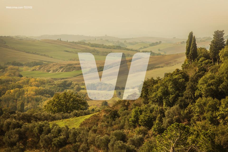 Tuscany Fall Scenery