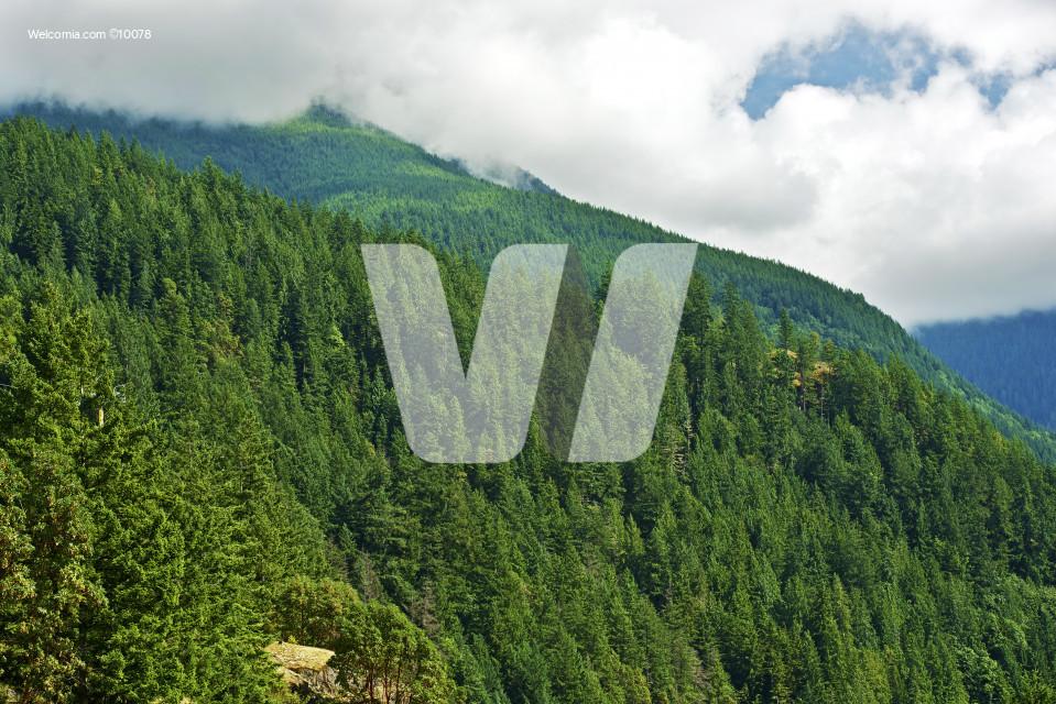 British Columbia Mountains