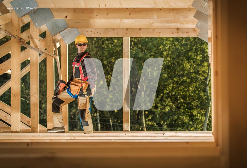 Building Frame Assembly
