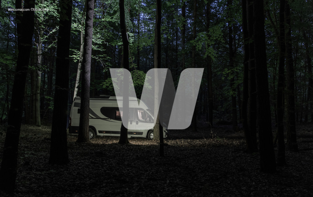 Camper Van Camping Inside the Forest During Night Time
