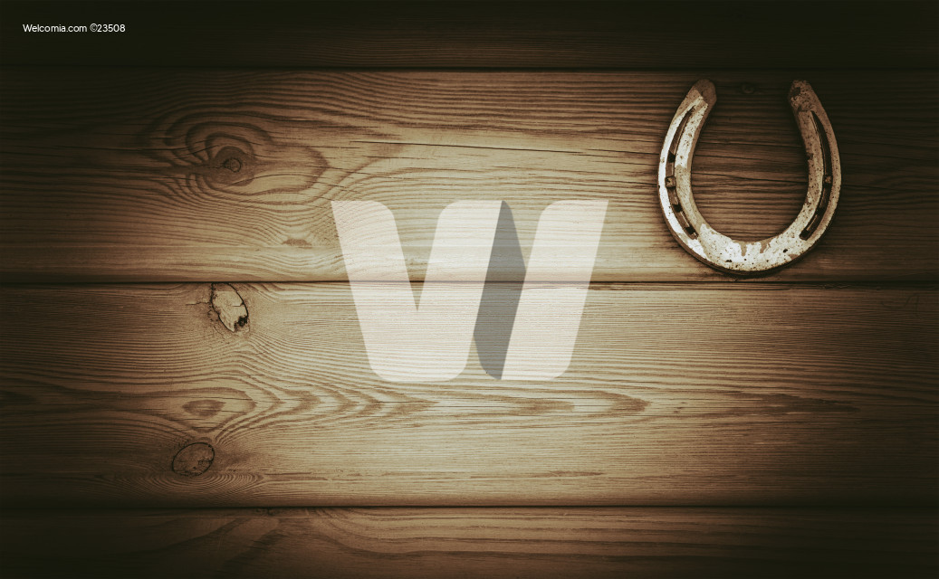 Equestrian Industry Lucky Horseshoe Wooden Photo Background