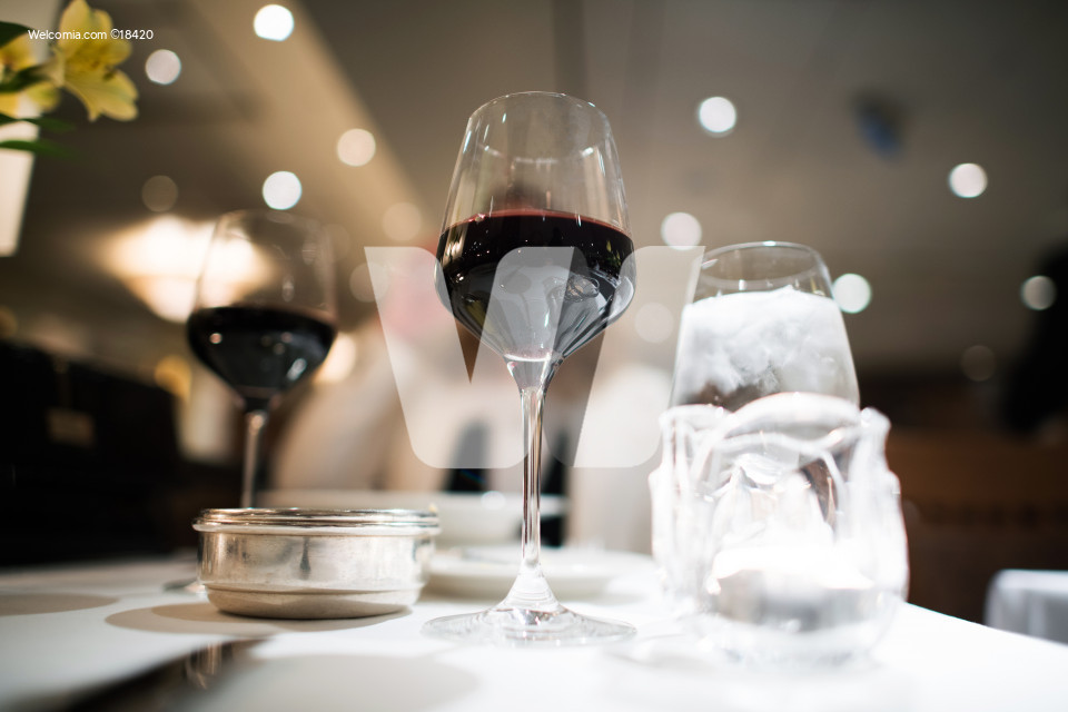 Fancy Dinner with Red Wine