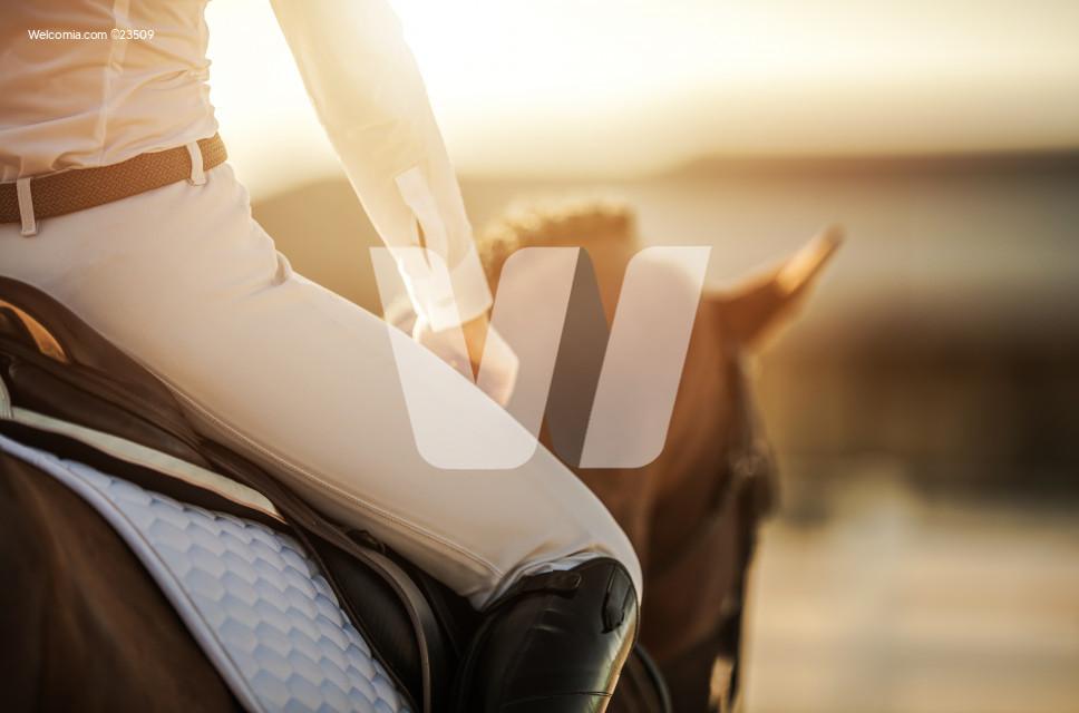 Female Horse Rider in Equestrian Facility
