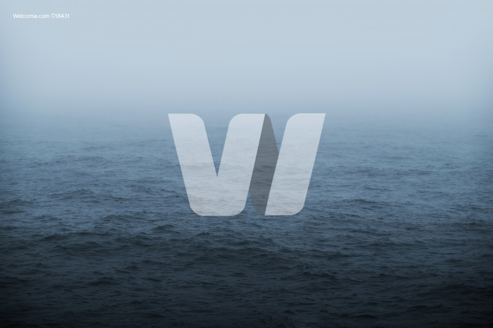 Foggy Sea Weather Theme