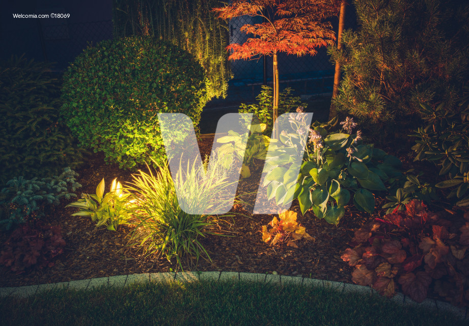 Garden Ambient Lighting