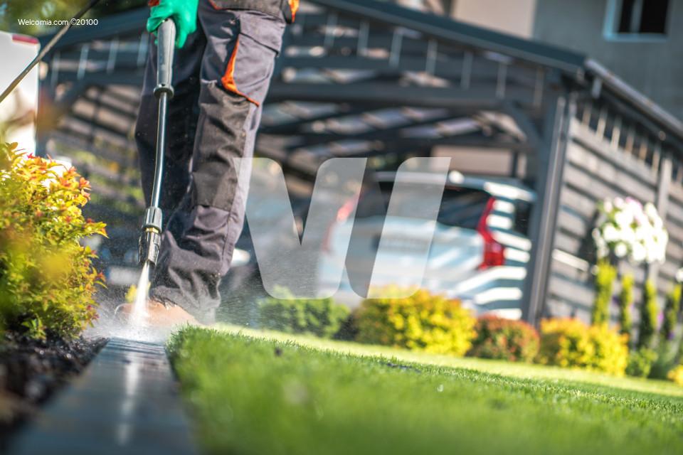 Garden Cleaning Work