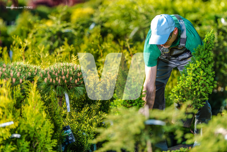 Gardener Buying New Plants